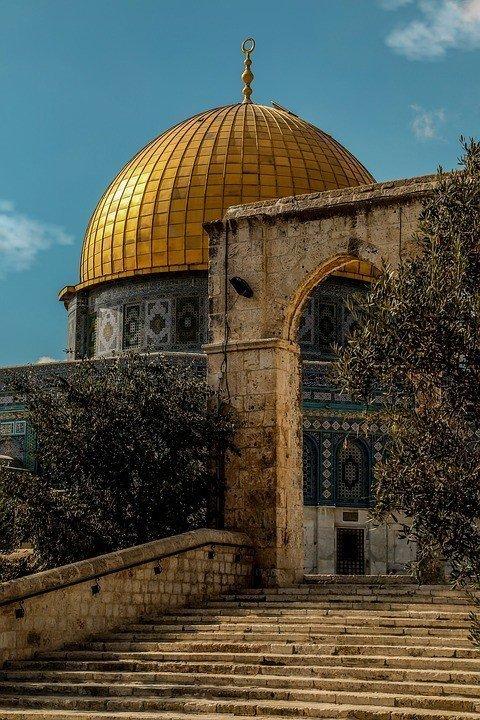 الشحن السريع إلى فلسطين